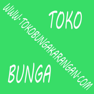 Jual Bunga Happy Wedding Senayan